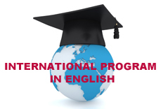 International Graduate Program 'Telecommunication networks'